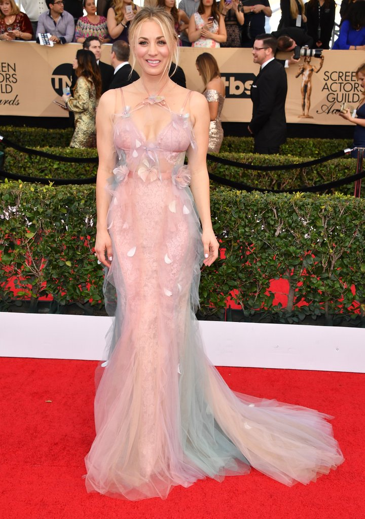 2017 SAG Awards Red carpet